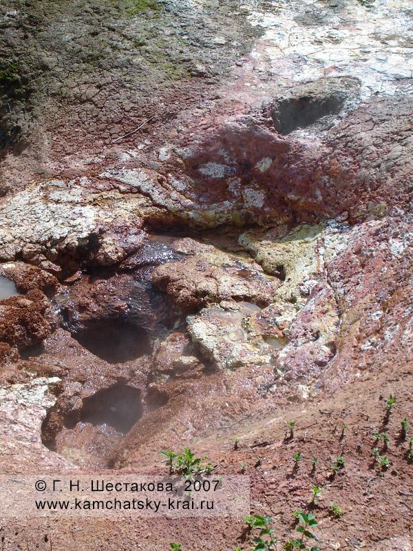 Долина гейзеров, гейзер Пестрый (Унитазики)