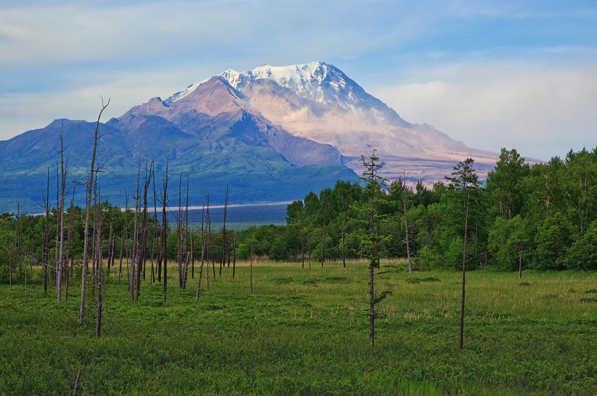 Вулкан Шивелуч (Shiveluch Volcano) в Камчатском крае
