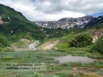 Камчатка, Долина гейзеров