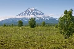 Вулкан Опала (Opala Volcano)