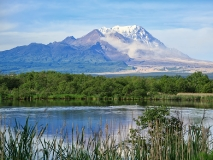 Вулкан Шивелуч (Shiveluch Volcano) на Камчатке