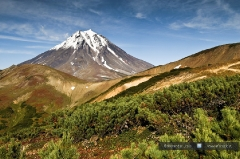 Вилючинский вулкан (Viliuchinsky Volcano)
